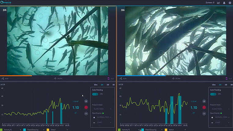 AKVA Observe Feeding fish with AI